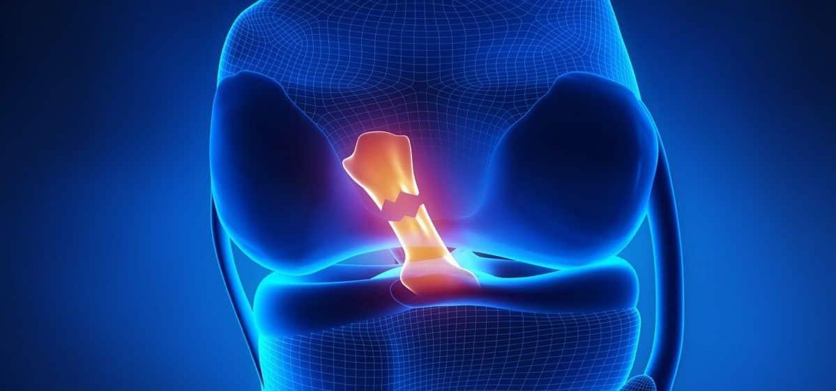 II Jornadas de rehabilitación deportiva - AD fisioterapia valencia